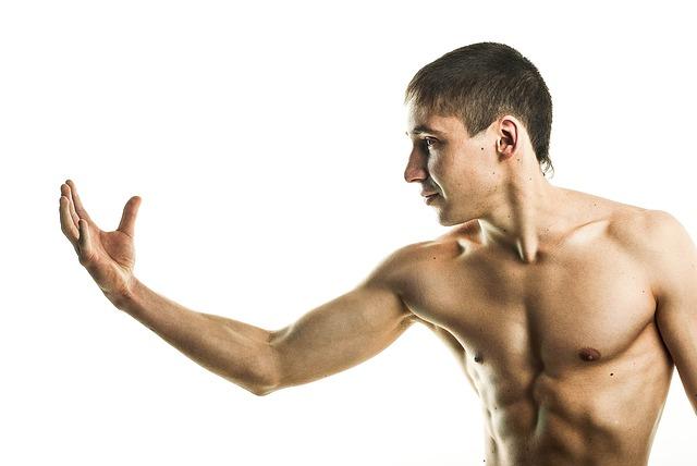 筋肉の鍛え方